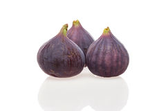 Ripe Common fig Royalty Free Stock Image