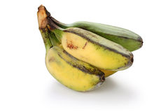 Ripe cooking banana Royalty Free Stock Photography