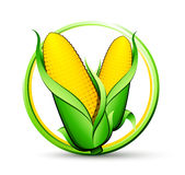 Ripe corn button Royalty Free Stock Images