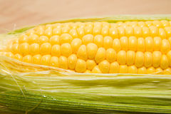 Ripe corn on the cob with water drops on grains Royalty Free Stock Image