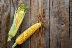 Ripe corn on cobs on rustic wooden table top view copyspace Royalty Free Stock Image