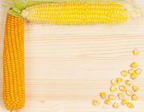Ripe corn Royalty Free Stock Images