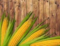 Ripe corn Royalty Free Stock Photos