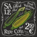 Ripe corn vector logo design template. fresh food Stock Photo