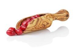 Ripe cornel berries in wood scoop Stock Photo