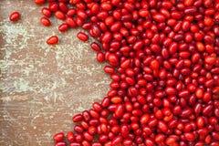 Ripe Cornus mas cherry Stock Images
