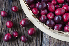 Ripe cranberries in basket Royalty Free Stock Image