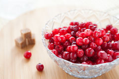 Ripe cranberries in a glass bowl and refined sugar royalty free stock photography