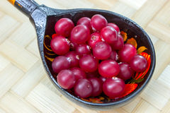 Ripe cranberries_3 Royalty Free Stock Images