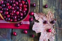 Ripe cranberries Royalty Free Stock Photos