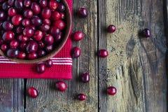 Ripe cranberries Royalty Free Stock Photo