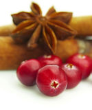 Ripe cranberry Royalty Free Stock Image