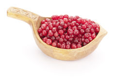Ripe cranberry in wooden bowl Royalty Free Stock Photos