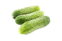 Ripe cucumber Royalty Free Stock Photos