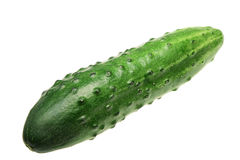 Ripe cucumber on a white background Stock Photography