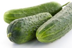 Ripe cucumbers Stock Photography