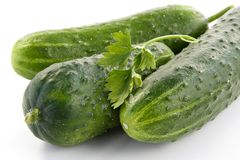 Ripe cucumbers Stock Images