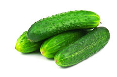Ripe cucumbers Stock Photo