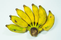 Ripe cultivate banana Stock Photo