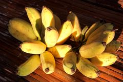 Ripe cultivated bananas. On woven wood table stock photography