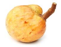 Ripe custard apple Royalty Free Stock Photo