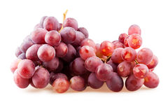 Ripe dark grapes Stock Image