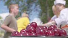 Ripe Dark Red Cherries stock footage