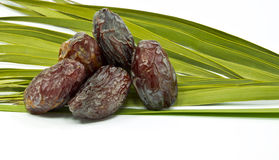 Ripe dates and palm leaves on white background Stock Photos