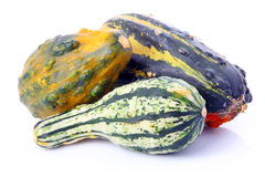 Ripe decorative gourd vegetables Royalty Free Stock Images