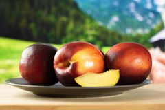 Ripe deep red nectarine stock images