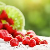 Ripe and delicious strawberries in a basket in the garden. Harvest. Selective focus. Background with copy space. Ripe and delicious strawberries in a basket in Royalty Free Stock Image