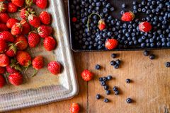 Ripe delicious strawberries and blueberries on vintage wooden table royalty free stock photography