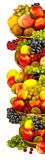Ripe different fruits Stock Images