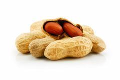 Ripe Dried Peanut Isolated on White Royalty Free Stock Images