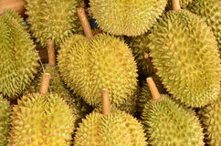Ripe durian fruit. Group for sale Royalty Free Stock Photos