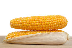 Ripe ears of corn Royalty Free Stock Photo