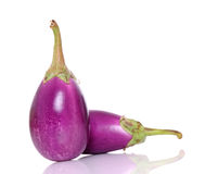 Ripe eggplant Royalty Free Stock Photos