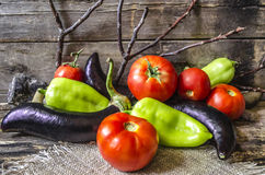 Ripe eggplant,tomatoes and peppers on of burnt boards Royalty Free Stock Photo