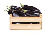Ripe eggplant in a wooden box royalty free stock image