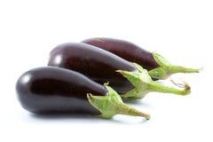 Ripe eggplants Stock Images