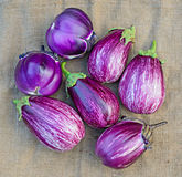Ripe eggplants on a sacking background Royalty Free Stock Photography