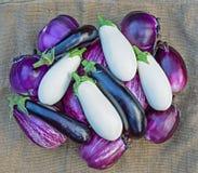 Ripe eggplants on a sacking background Stock Images