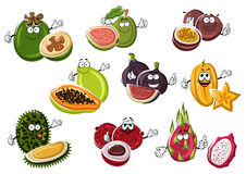 Ripe exotic asian fruits characters Royalty Free Stock Images