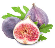 Ripe fig fruits. Royalty Free Stock Photo