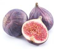 Ripe fig fruits. Stock Image