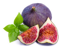 Ripe fig with green leaf basil Royalty Free Stock Images