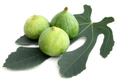 Ripe figs with green leaf Stock Photography