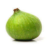 Ripe figs Stock Image