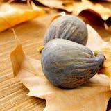 Ripe figs Royalty Free Stock Photos