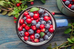 Ripe forest berries Royalty Free Stock Photography